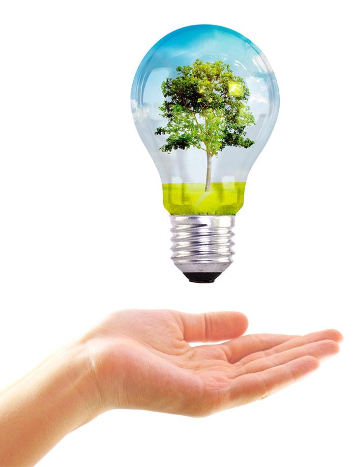 Ciudadano consultas medio ambientales Línea Verde